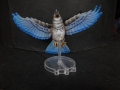 Tail Feathers - Birds - Blue Jay 04