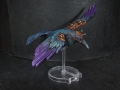 Tail Feathers - Birds - Rook 03