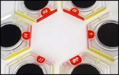Fun-With-Magnets-Dreadball-Featured