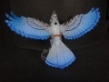 Tail Feathers - Birds - Blue Jay 01