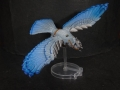 Tail Feathers - Birds - Blue Jay 02