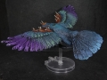 Tail Feathers - Birds - Rook 02