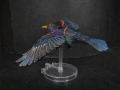 Tail Feathers - Birds - Starling 02